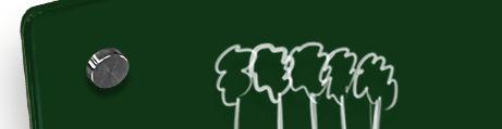 Whiteboard Glas Wald grün